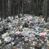 Фото с сайта http://zeleneet.com